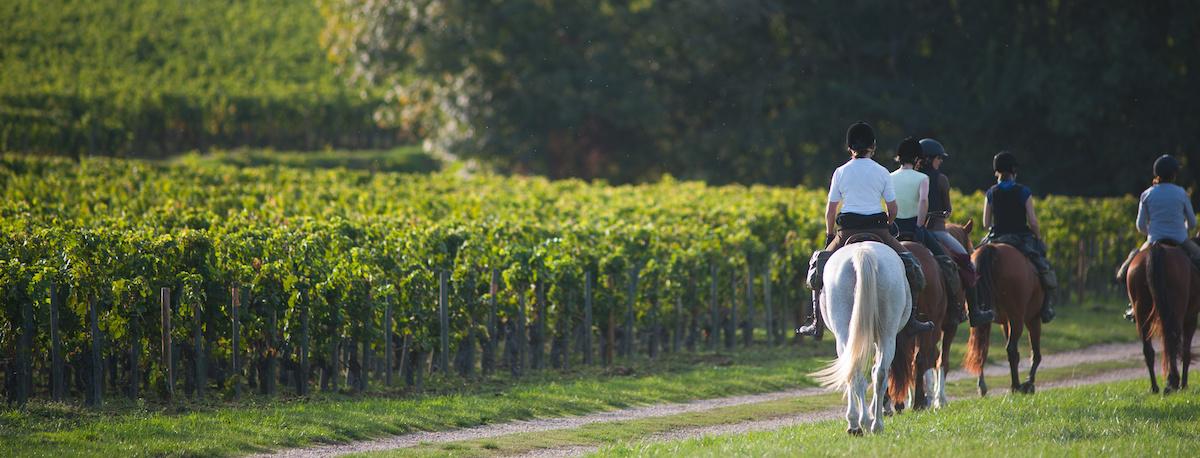 equitazione-horse-tuscany