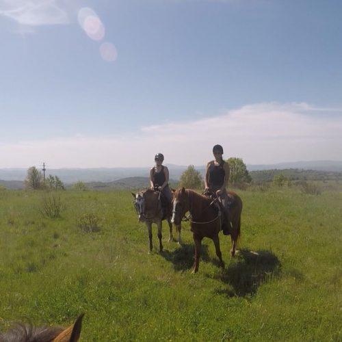 saturnia-horse