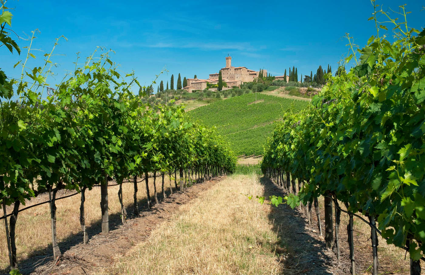 Castle to rent in Tuscany Banfi